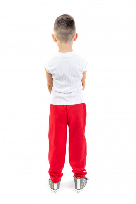 Pantaloni sport cu dunga laterala 5