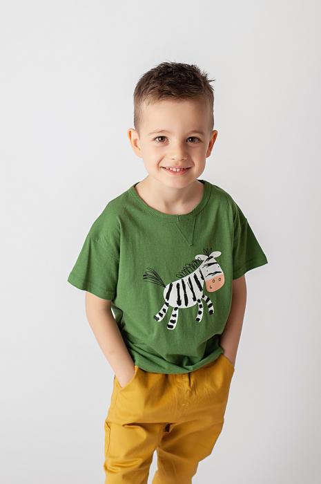 Tricou verde cu imprimeu zebra 1