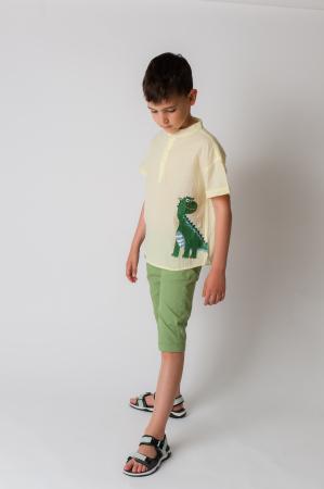 Camasa baieti cu imprimeu dinozaur [4]