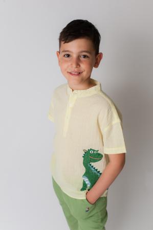 Camasa baieti cu imprimeu dinozaur [0]
