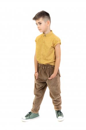 Pantaloni maro din catifea [7]