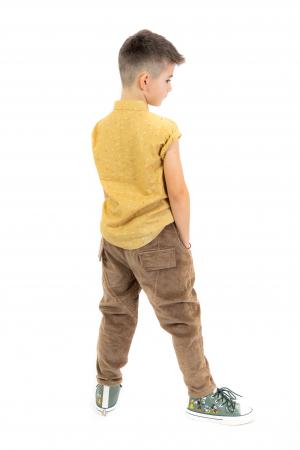 Pantaloni maro din catifea [5]