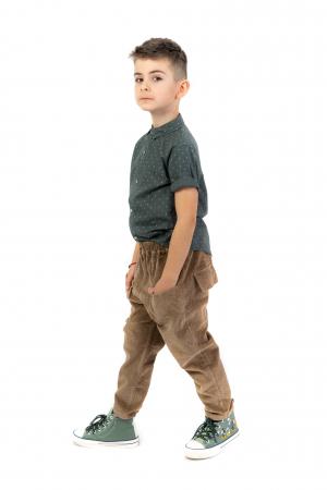 Pantaloni maro din catifea [1]