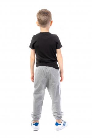 Pantaloni sport cu doua dungi laterale [2]