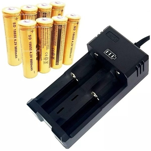 Incarcator pentru 2 acumulatori sau baterii reincarcabile 500mA cu decuplare automata 0