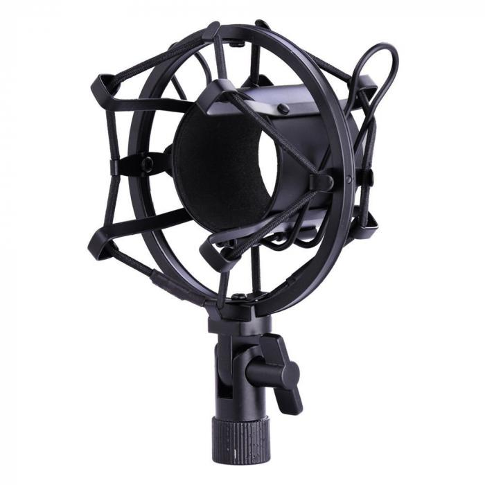 Microfon profesional de Studio si Karaoke cu condensator,BM-800 [1]