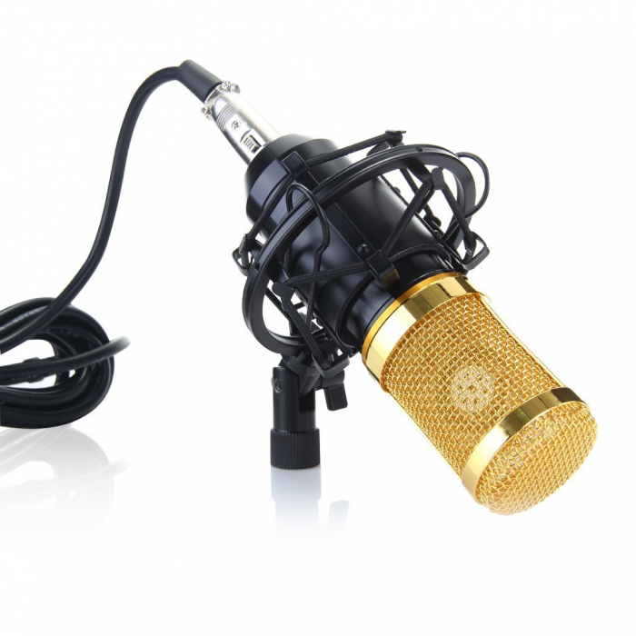 Microfon profesional de Studio si Karaoke cu condensator,BM-800 [2]