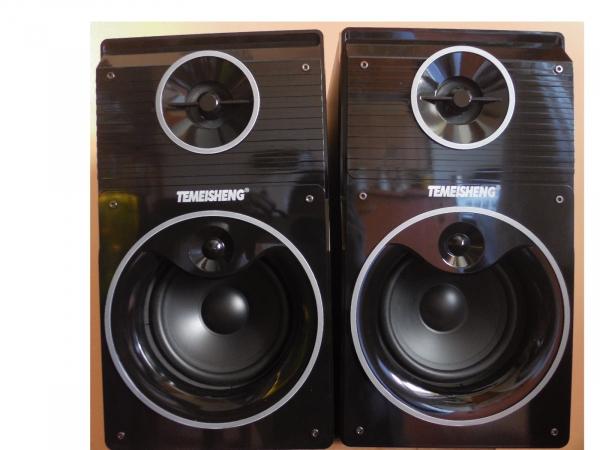 Set de 2 boxe audio profesionale Temeisheng DP-Y3 cu stick USB si SD-card 0