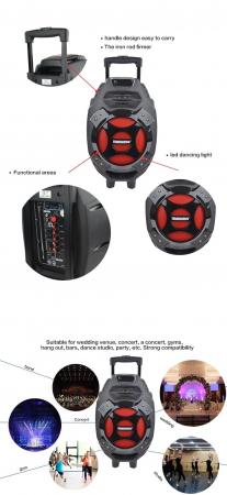 Boxa tip troler Temeisheng Q7S-16, cu microfon wireless si telecomanda [5]