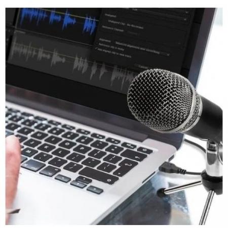 Microfon Profesional de inregistrare vocala si Karaoke pentru Studio, WG-500II [2]
