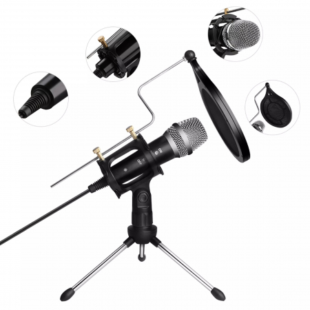 Microfon Profesional de inregistrare vocala si Karaoke pentru Studio, WG-500II [0]