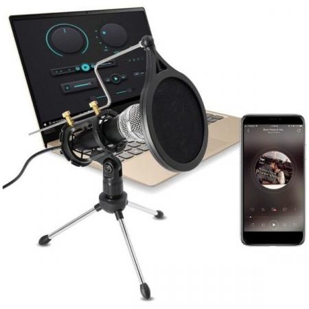 Microfon Profesional de inregistrare vocala si Karaoke pentru Studio, WG-500II [1]