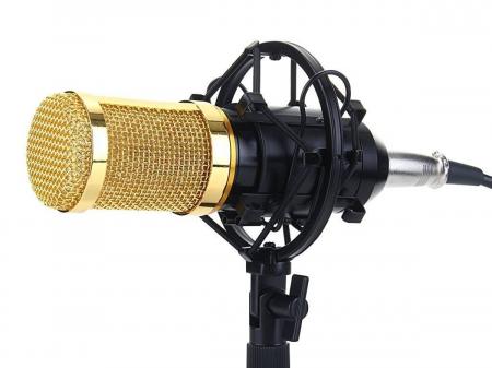 Microfon profesional de Studio si Karaoke cu condensator,BM-800 [0]