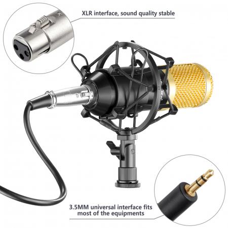 Microfon profesional de Studio si Karaoke cu condensator,BM-800 [3]