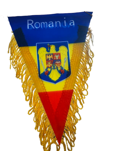 Fanion Romania Vision, tricolor, cu stema [2]