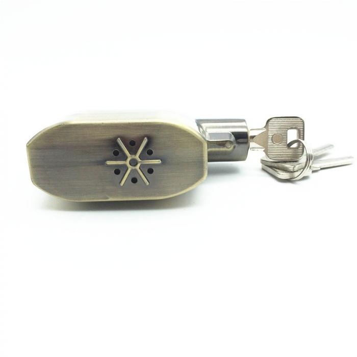 Lacat cu alarma electronica Vision, senzor de miscare, 3 chei 10 mm, 110 DB [3]