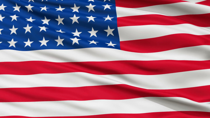 Steag America Vision, dimensiune 150x90cm [0]