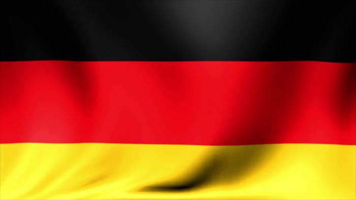 Steag Germania Vision, dimensiune 150x90cm [0]