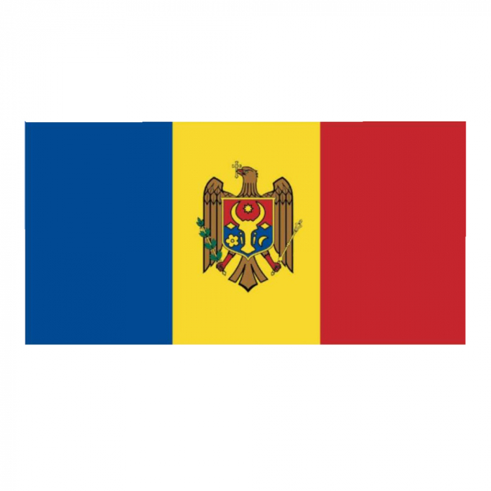 Steag Moldova Vision dimensiune 150x90cm [0]