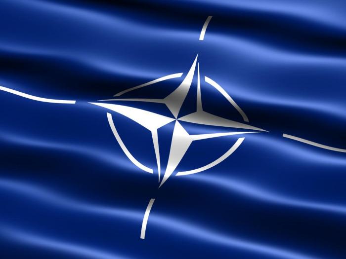 Steag NATO Vision poliester, format mare 120x80cm [0]