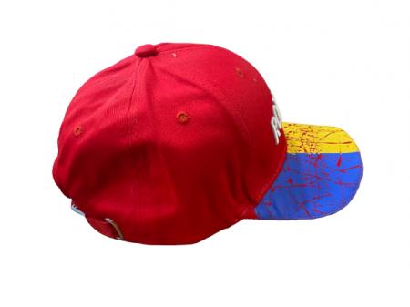 Sapca Vision, model cu  Romania, multicolor [1]