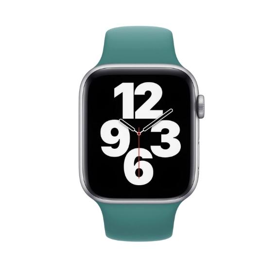 Curea Apple Watch Sport Verde Cactus 42/44mm [2]