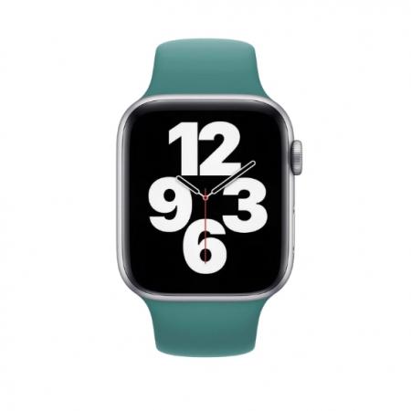 Curea Apple Watch Sport Cactus 38/40mm [2]