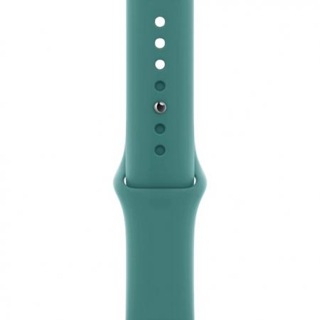 Curea Apple Watch Sport Cactus 38/40mm [0]