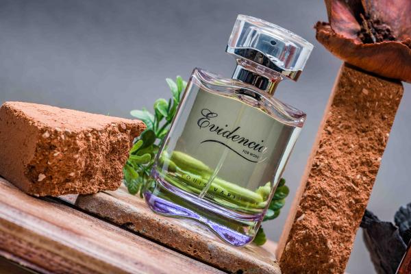 Louis Varel Evidencia, apa de parfum 90 ml, femei 3