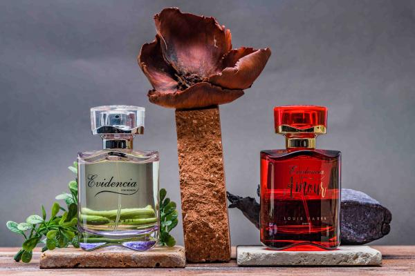 Louis Varel Evidencia, apa de parfum 90 ml, femei 7