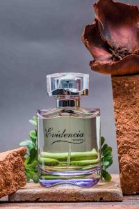 Louis Varel Evidencia, apa de parfum 90 ml, femei2