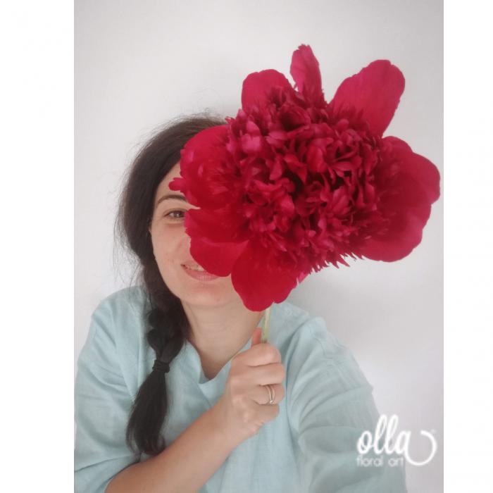 Buchet de flori Olla din Bujori Rosii Red Charm [1]