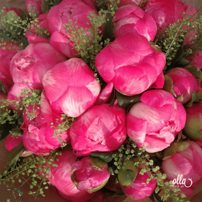 Fericire cat Cuprinde, buchet de flori Olla, din Bujori Corai Coral Charm 31 fire si verdeata [5]