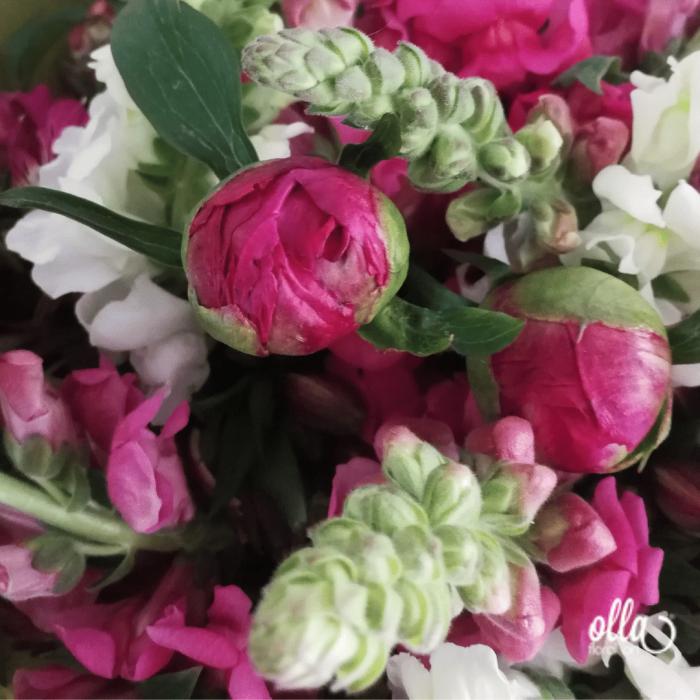 Parfum de Primavara, buchet de flori Olla, din Bujori Corai si Gura Leului [3]
