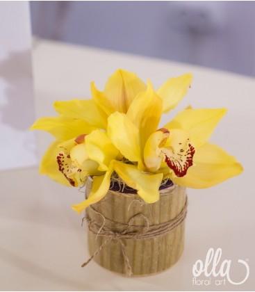 Primavara pura, aranjament floral pe suport de lemn 0