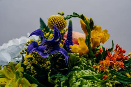 Aroma de Toamna, buchet de hortensia, clematis si orhidee vanda2