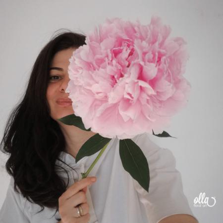 buchet-de-flori-olla-din-bujori-roz-sarah-bernhardt [1]