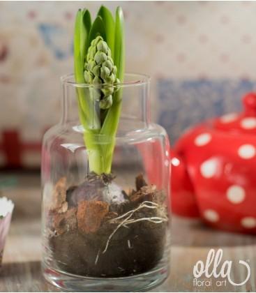 PR08 Fior Timid, aranjament floral pe suport de sticla0