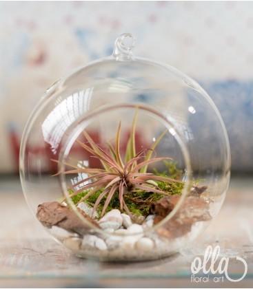 Flori in glob de sticla0