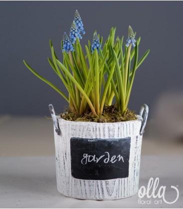 Inceputul Promitator, aranjament floral pe suport de vas ceramic0