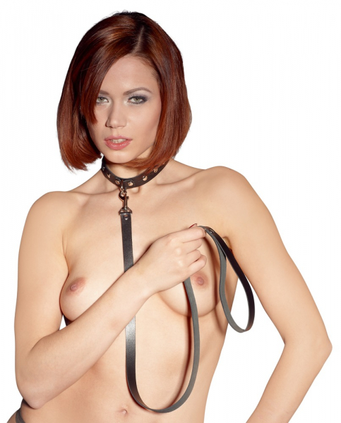 Collar with Leash 2