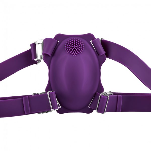 harness ajustabil purple