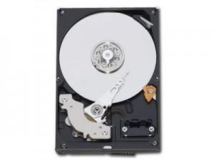 """WESTERN DIGITAL HDD Desktop Caviar Blue (3.5"""", 1TB, 64MB, SATA III-600).0"""