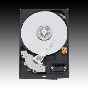 """WESTERN DIGITAL HDD Desktop Caviar Blue (3.5"""", 1TB, 64MB, SATA III-600).1"""