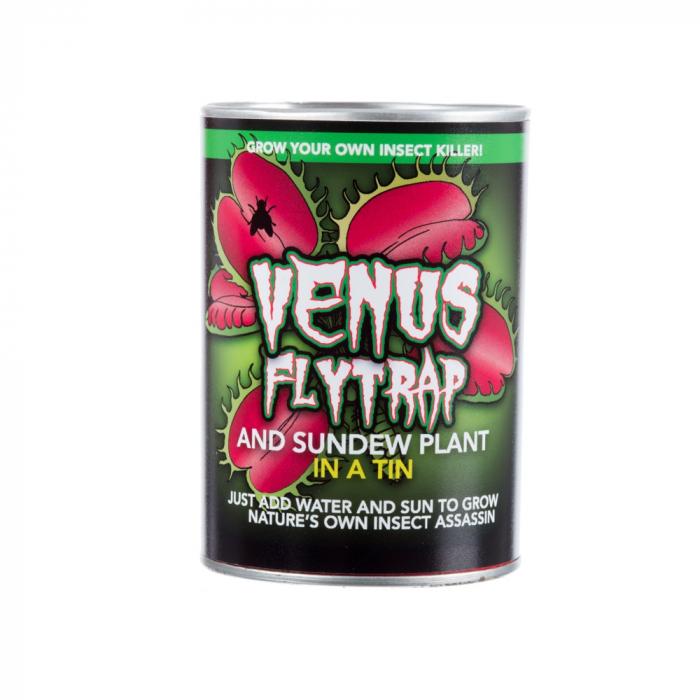 Seminte planta carnivora - Kit Venus Fly Trap 2