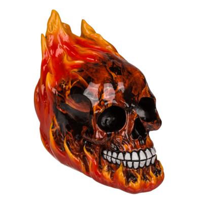Pusculita Craniu in flacari [1]