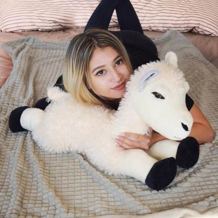 Mascota Alpaca0