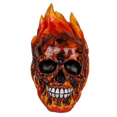 Pusculita Craniu in flacari [0]