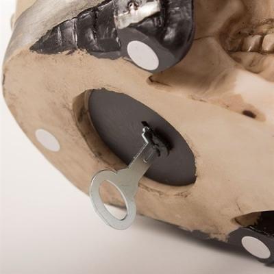 Pusculita craniu motociclist2