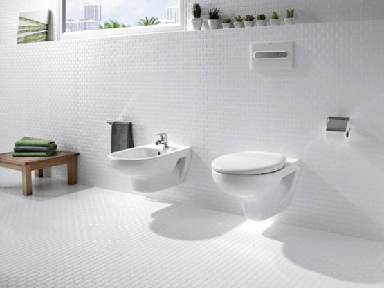 Vas WC Suspendat Roca Victoria 1